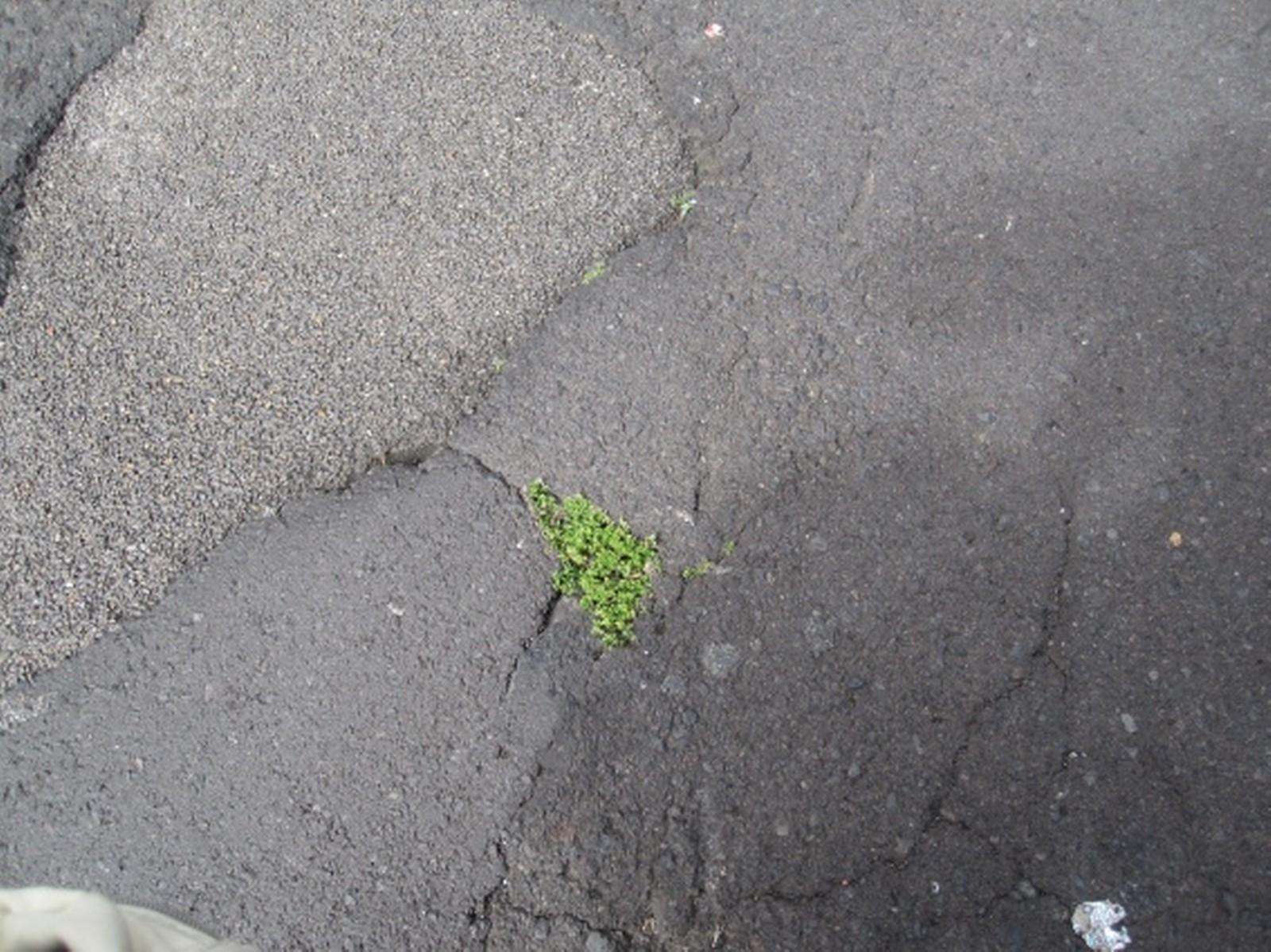 Um kommunale Straßen zu sanieren und zu erhalten, plädieren die Bauverbände NRW für nutzergebundene Straßenausbaubeiträge, die kontinuierlich von den Anliegern aufzubringen sind.